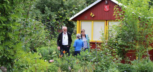 38 Parzellen gehören zum Kleingärtnerverein Fuchsberg. Die Jury wirft beim Rundgang einen Blick auf sie. Foto: Harm