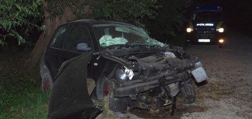 Der Lupo, an dem beide Frontairbags auslösten, wurde durch den Unfall sehr stark beschädigt. Foto: gri