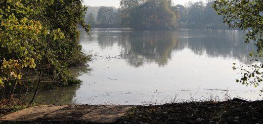 Der See ist Anfang Oktober abgepumpt worden und inzwischen wieder mit Wasser gefüllt. Foto: Harm