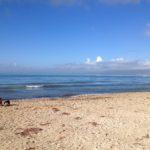 Die Wintersonne an der Playa de Palma genießenFoto: Kaloglou