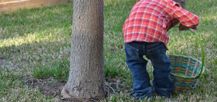 Von 10 bis 12 Uhr haben Kinder die Gelegenheit ihren Spürsinn zu testen und zahlreiche österliche Schätze zu finden. Foto: pixabay