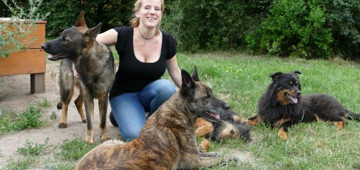 Tierpension, Hunde, Laura Meyer, Foto: Barkei, 2019