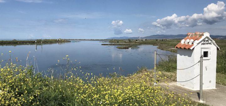 Das Evros-Delta zählt mit zu den wichtigsten Ökosysteme Europas. Foto: Kaloglou