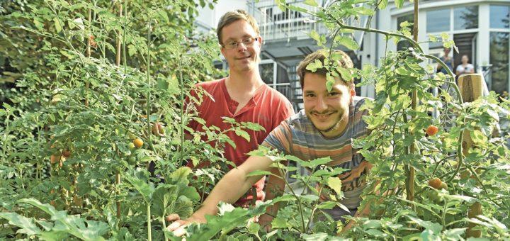 Im Garten haben die Bewohner ein Hochbeet angelegt, in dem Sven (l.) und Niklas (r. ) auch Tomaten und Zucchini züchten. Foto: Schlie