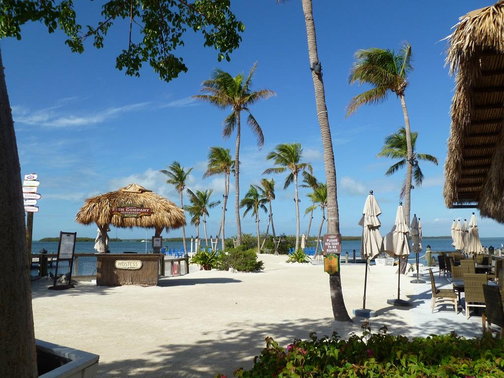 Feinsandige Strände, klares Wasser und wedelnde Palmen – damit punktet Florida bei den deutschen Gästen.