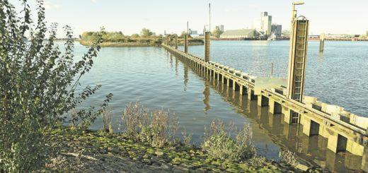 An der Spundwand am Lankenauer Höft zwischen Weser und Hafenbereich sollen künftig Hausboote festmachen.Foto: Schlie