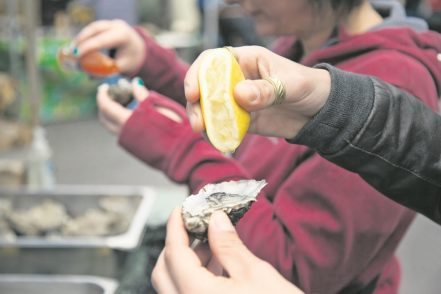 Austern – eine beliebte Delikatesse nicht nur bei den Einheimischen. Foto: Kelvin Gillmor/Failte Ireland/Tourism Ireland