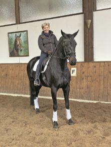 Birgit Wellhausen verkauft Pferde bis nach Japan.