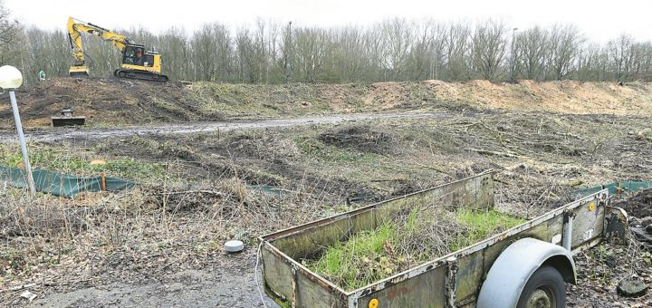 Nicht schön, aber bevor die Feuerwache 7 gebaut werden kann, muss der Baugrund am Hochschulring von Bäumen befreit werden.Foto: Schlie