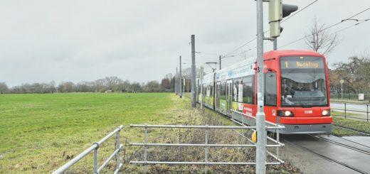 Die Handelskammer fordert, die Osterholzer Feldmark für den Wohnungsbau freizugeben. Durch die Straßenbahn sei das Areal bereits gut an den Verkehr angebunden, betonen die Experten.Foto: Schlie