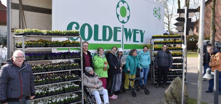 Die Gärtnerei Coldewey aus Delmenhorst spendete Frühlingsblumen gegen Corona-Blues. Foto: Albertushof