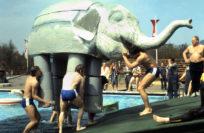 """Bei der Spielsequenz """"Die Elefanten"""" mussten die Rüsseltiere mit ihren zerbrechlichen und mit Schmierseife präparierten Beinen aus dem Wasser an Land gehievt werden. Foto: Stadtarchiv Delmenhorst"""