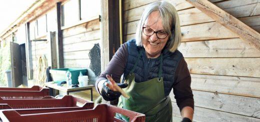 Restaurantleiterin Susanne Pinkenburg nutzt die freie Zeit und hilft auf dem Spargel- und Erdbeerhof Kaemena aus. Foto: Schlie