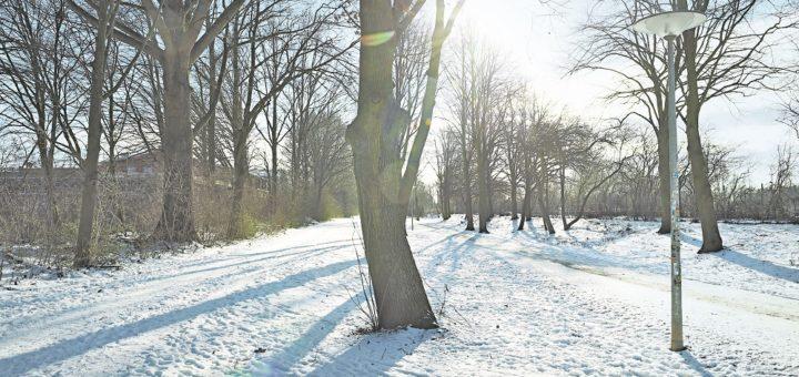 Der Beirat lehnte die Zusammenlegung der beiden Wege zwischen Kirchweg und Kaisen-Campus ab – was das Ende der weiteren Aufwertung im Grünzug bedeuten könnte.Foto: Schlie